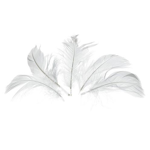 Deko-Federn 80 - 100 mm 10 g ~ 110 Stk. weiß