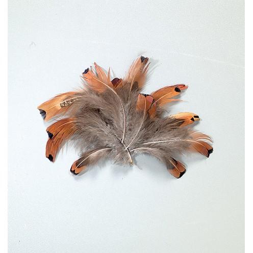 Herzfasan 10 cm 2 g natur